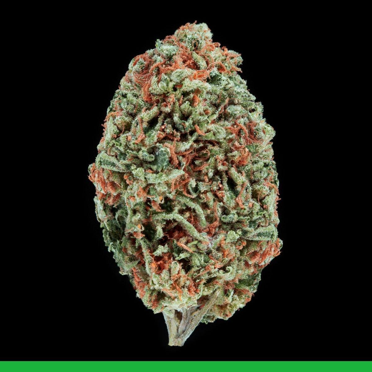 Island Girl Sativa Weed Strain
