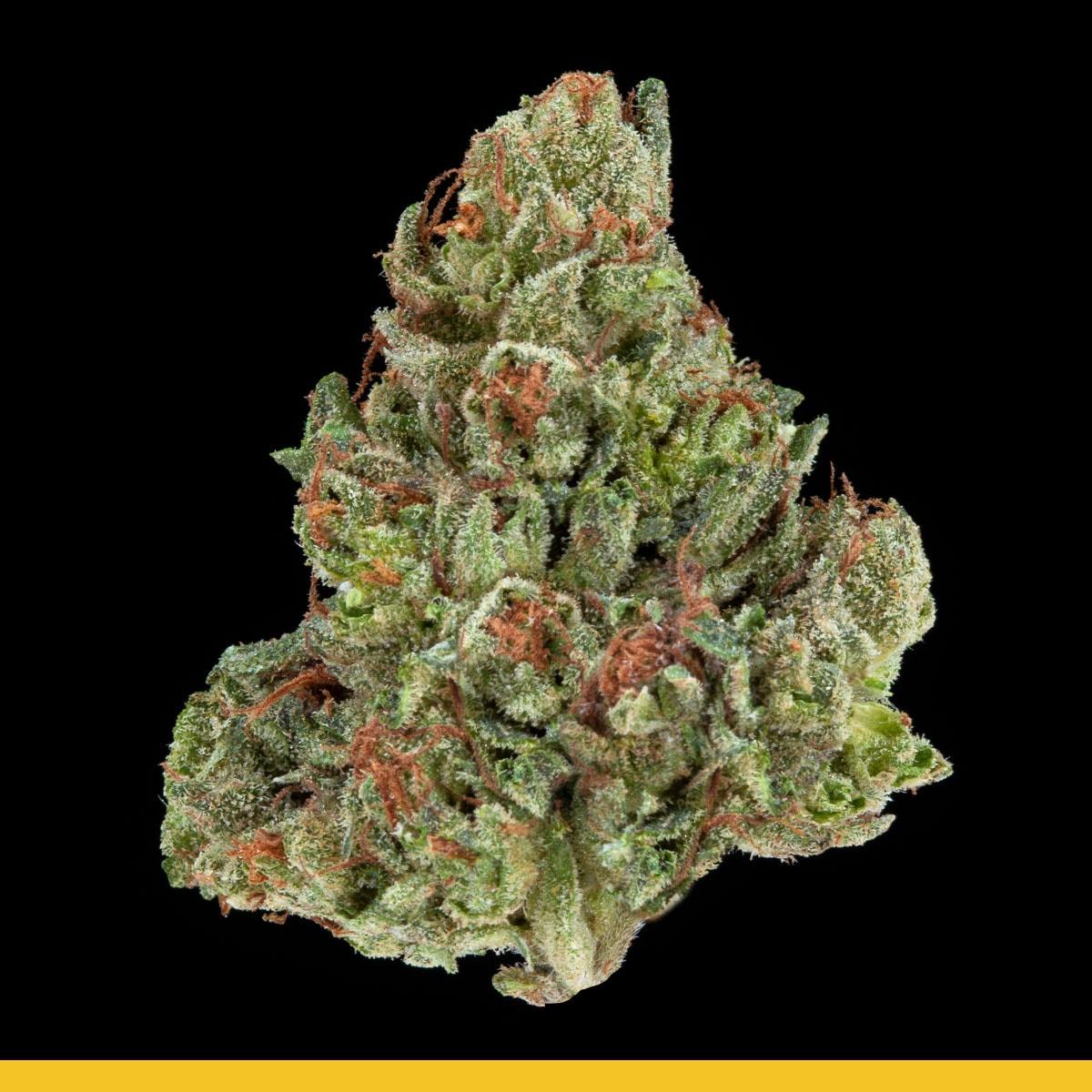 Kaya Weed Hybrid Kurple